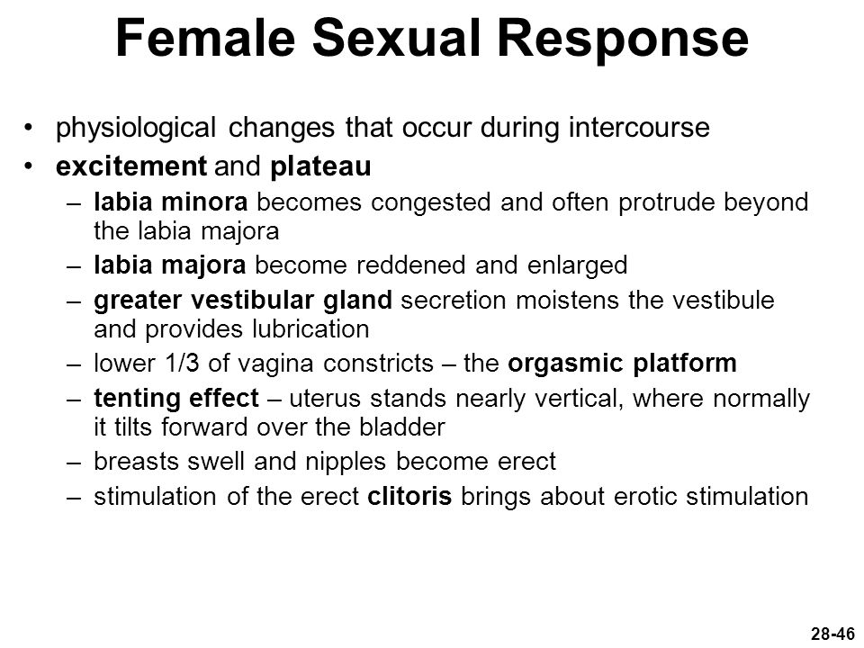 Female Sexual Response