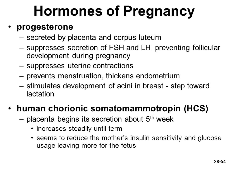 Hormones of Pregnancy progesterone