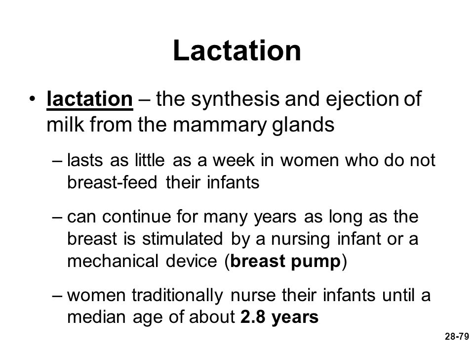 Lactation lactation – the synthesis and ejection of milk from the mammary glands.