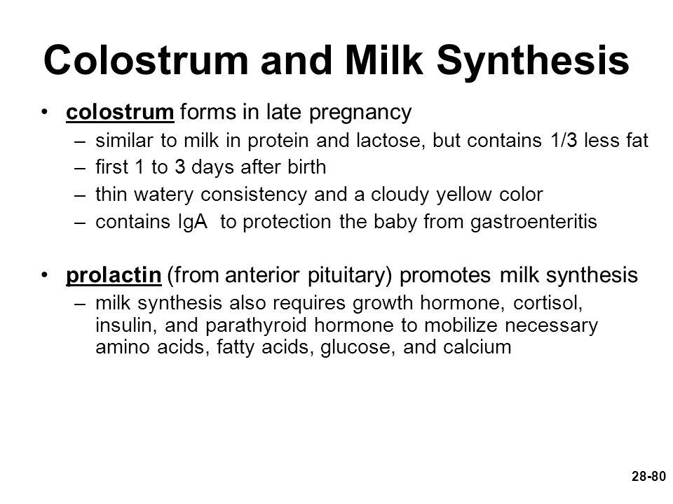 Colostrum and Milk Synthesis