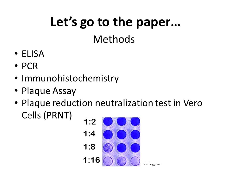 Let's go to the paper… Methods ELISA PCR Immunohistochemistry