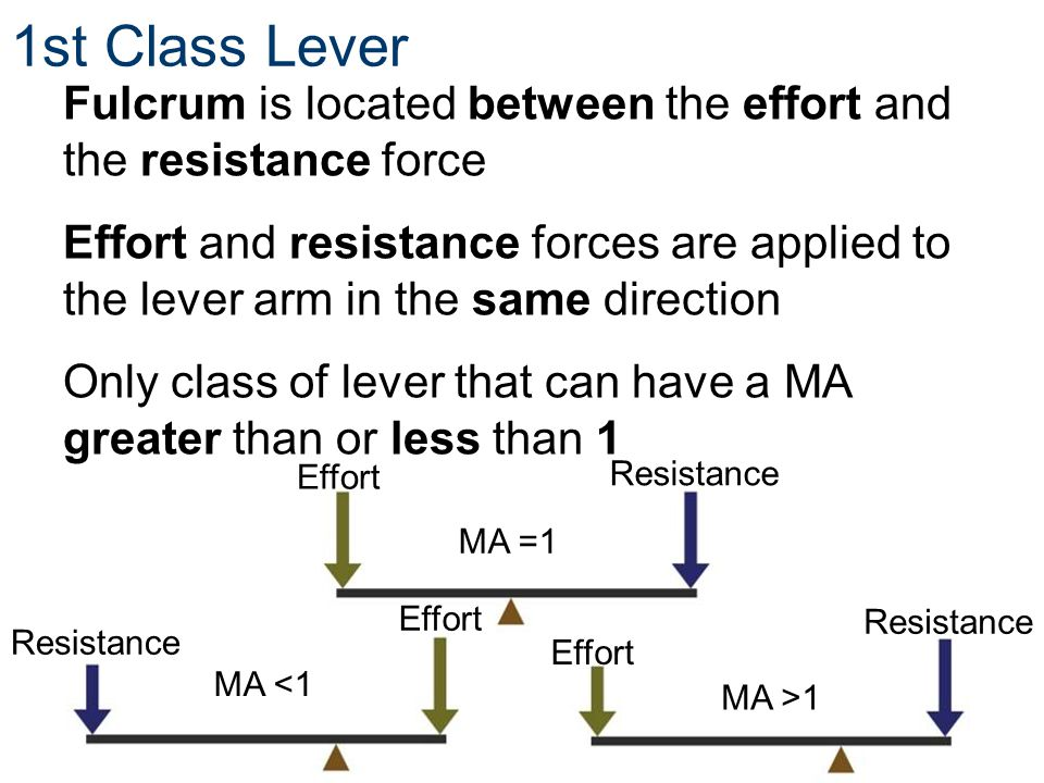 1st Class Lever Fulcrum is located between the effort and the resistance force.