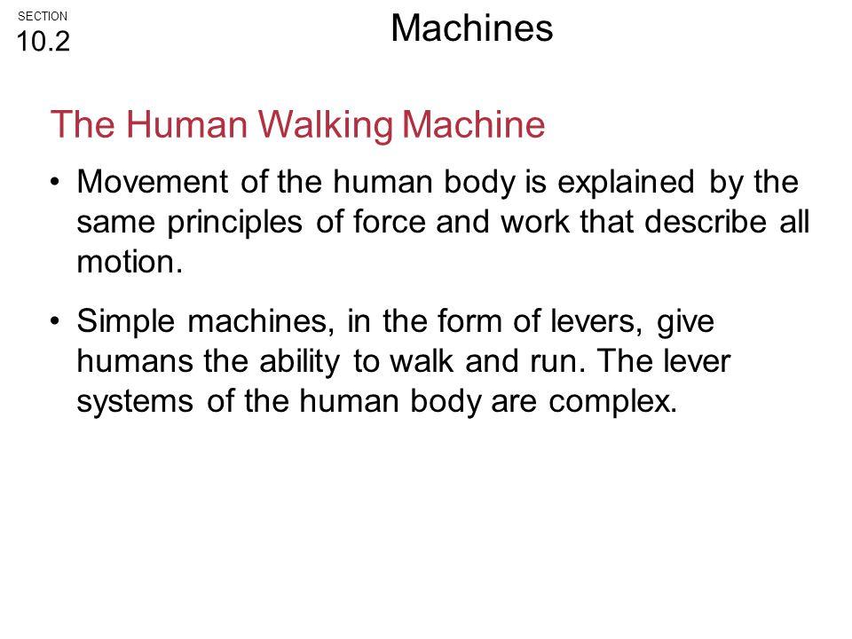 The Human Walking Machine