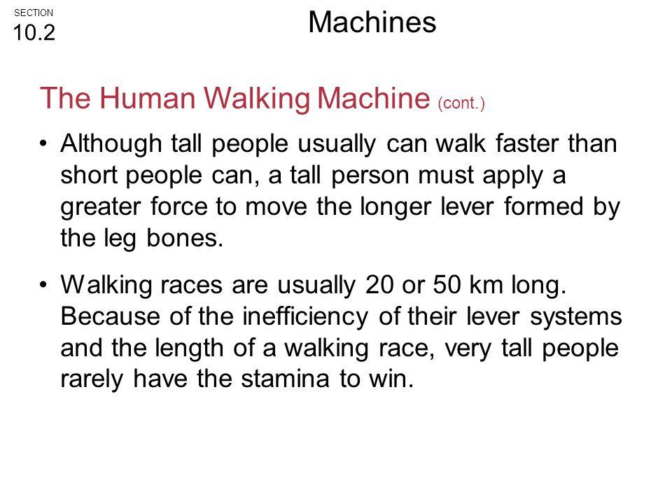 The Human Walking Machine (cont.)
