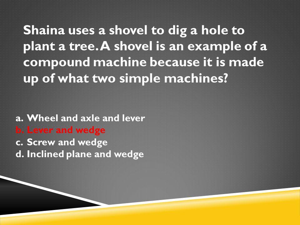 Shaina uses a shovel to dig a hole to plant a tree