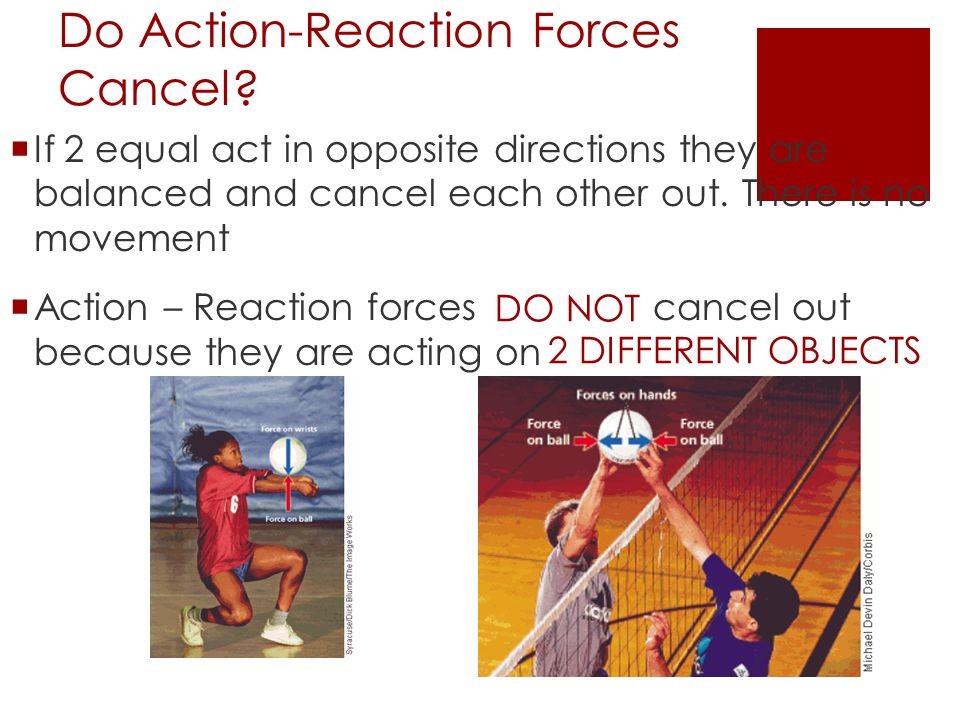 Do Action-Reaction Forces Cancel