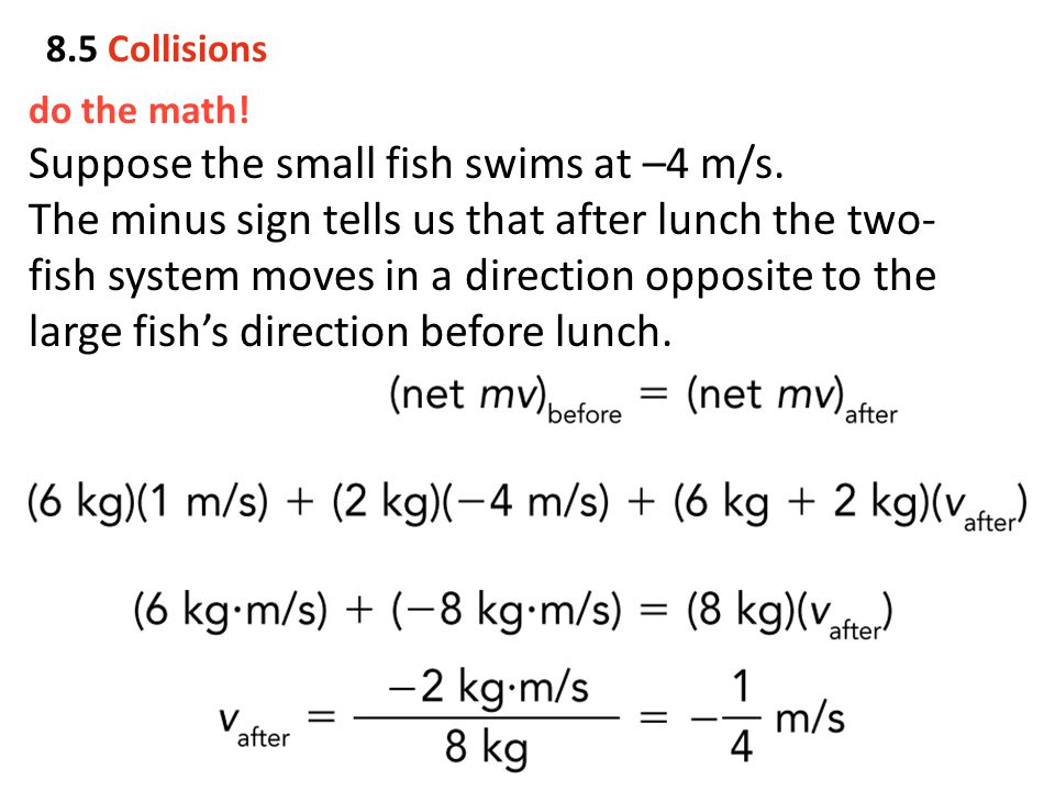 Suppose the small fish swims at –4 m/s.