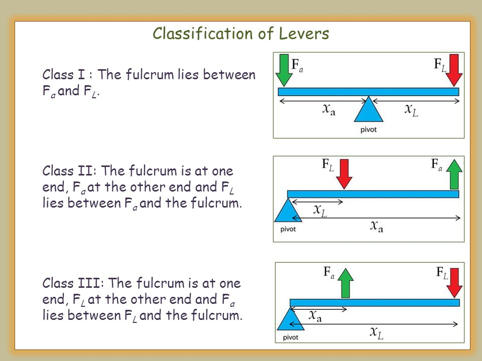 Classification of Levers