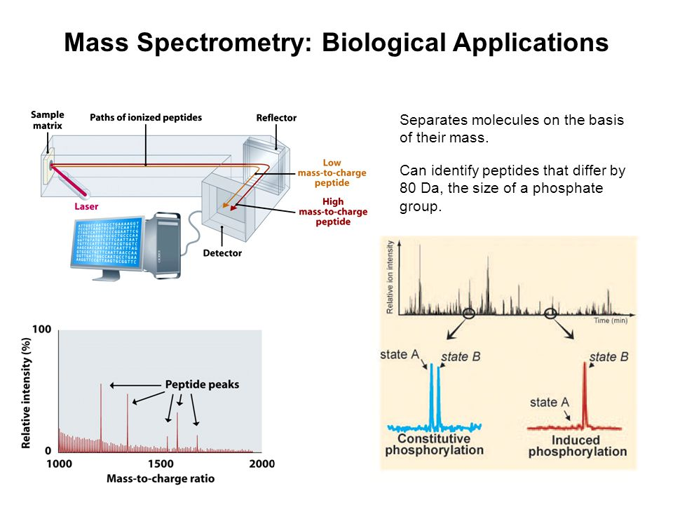 Mass Spectrometry: Biological Applications