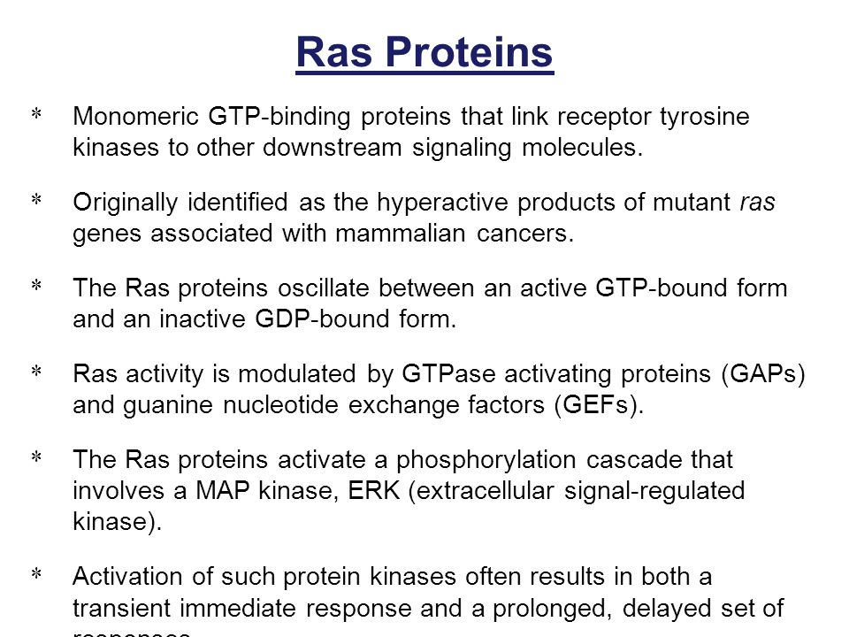 Ras Proteins Monomeric GTP-binding proteins that link receptor tyrosine kinases to other downstream signaling molecules.