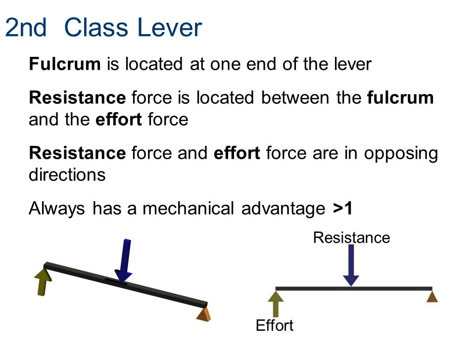2nd Class Lever Fulcrum is located at one end of the lever