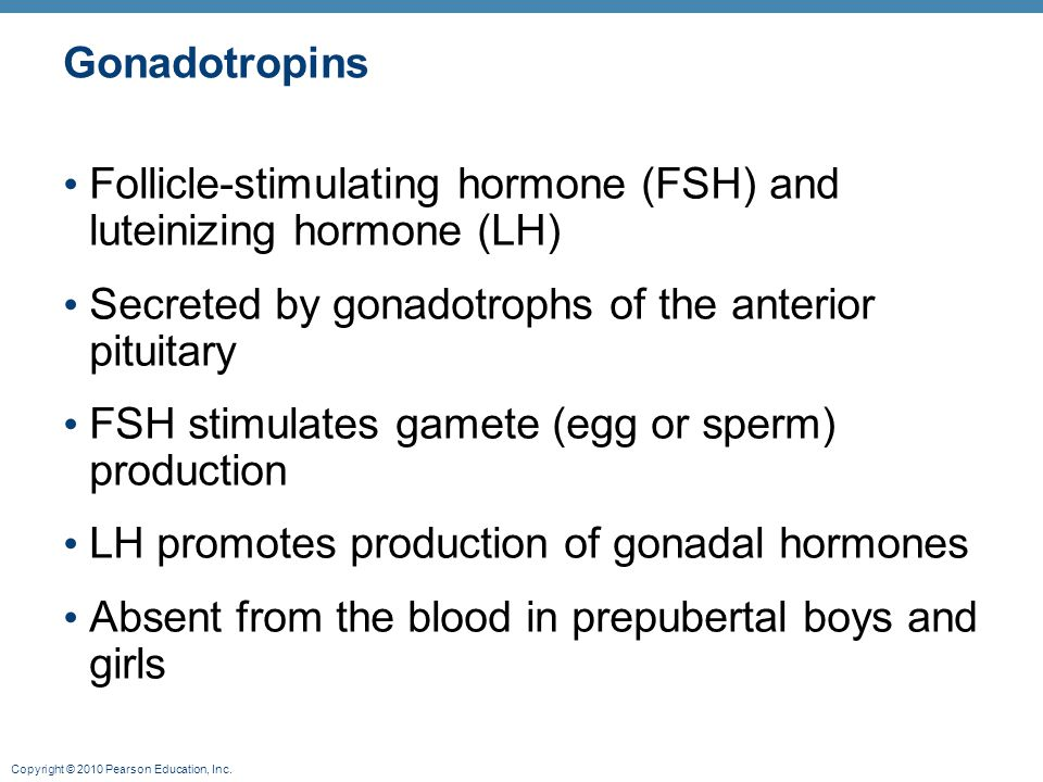 Gonadotropins Follicle-stimulating hormone (FSH) and luteinizing hormone (LH) Secreted by gonadotrophs of the anterior pituitary.
