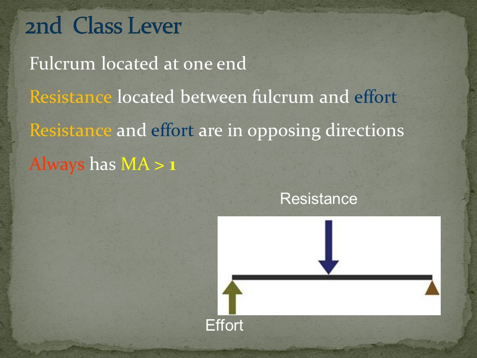 2nd Class Lever
