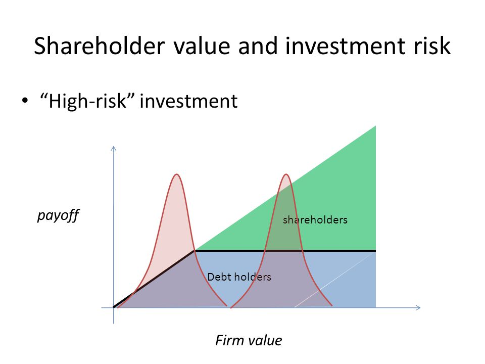 Shareholder value and investment risk