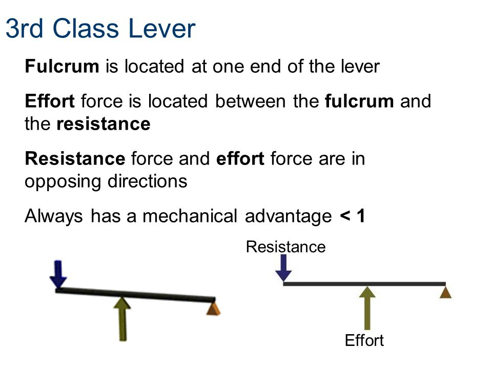 3rd Class Lever Fulcrum is located at one end of the lever