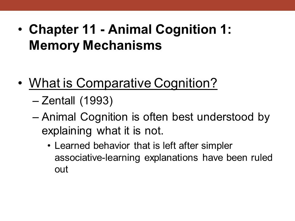 Chapter 11 - Animal Cognition 1: Memory Mechanisms