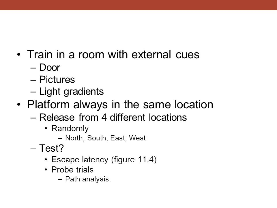Train in a room with external cues
