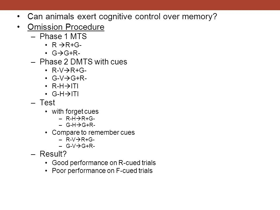 Can animals exert cognitive control over memory Omission Procedure