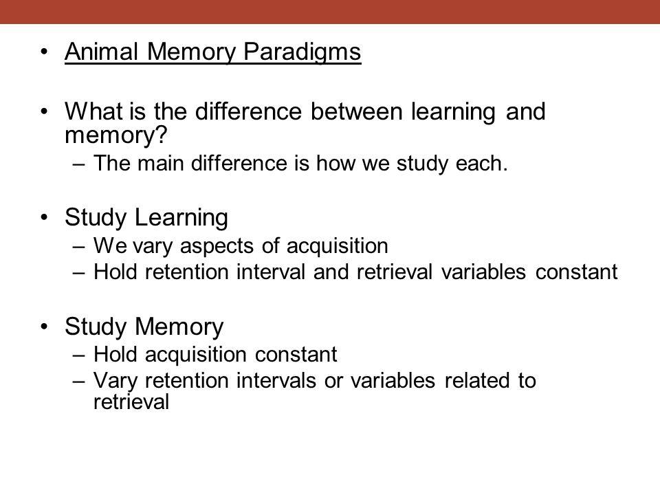 Animal Memory Paradigms