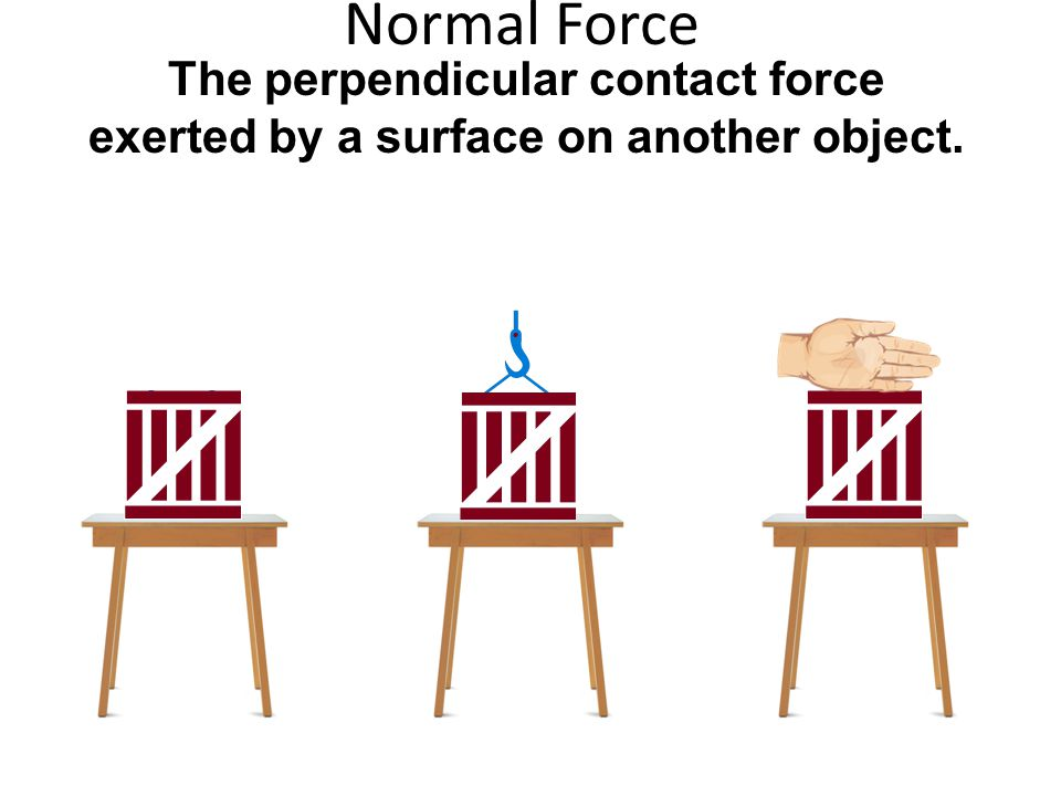 Normal Force The perpendicular contact force exerted by a surface on another object.