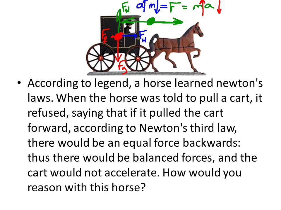 According to legend, a horse learned newton s laws
