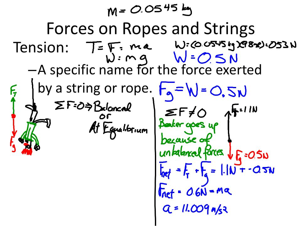 Forces on Ropes and Strings