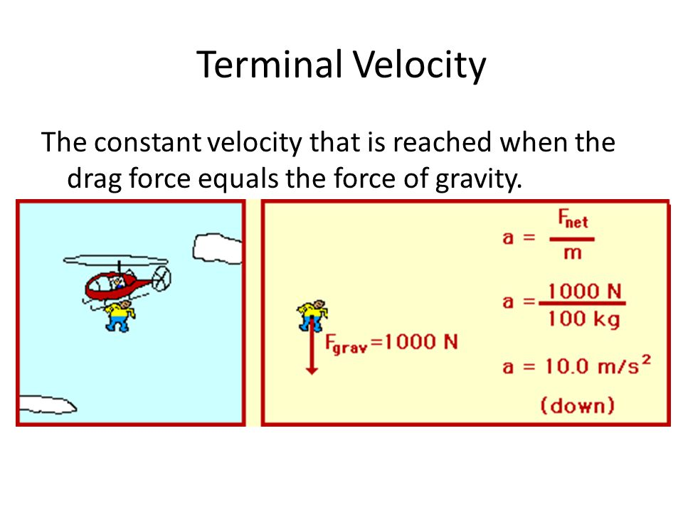Terminal Velocity The constant velocity that is reached when the drag force equals the force of gravity.