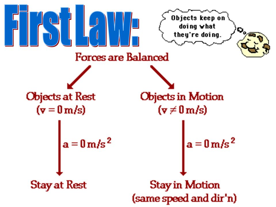 First Law: