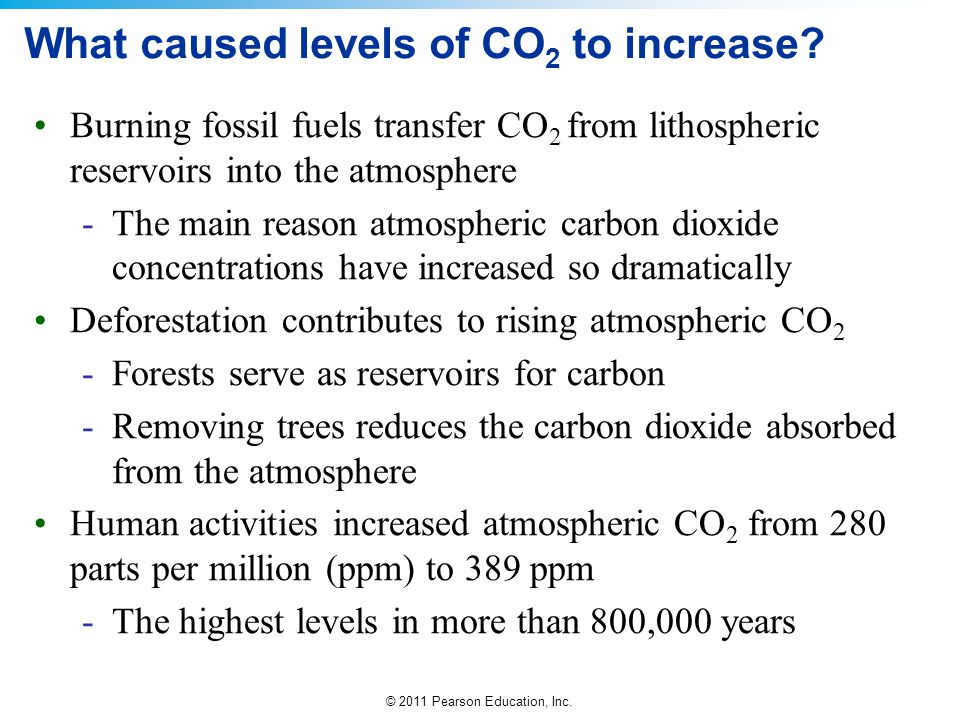 What caused levels of CO2 to increase