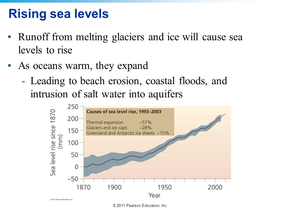 Rising sea levels Runoff from melting glaciers and ice will cause sea levels to rise. As oceans warm, they expand.