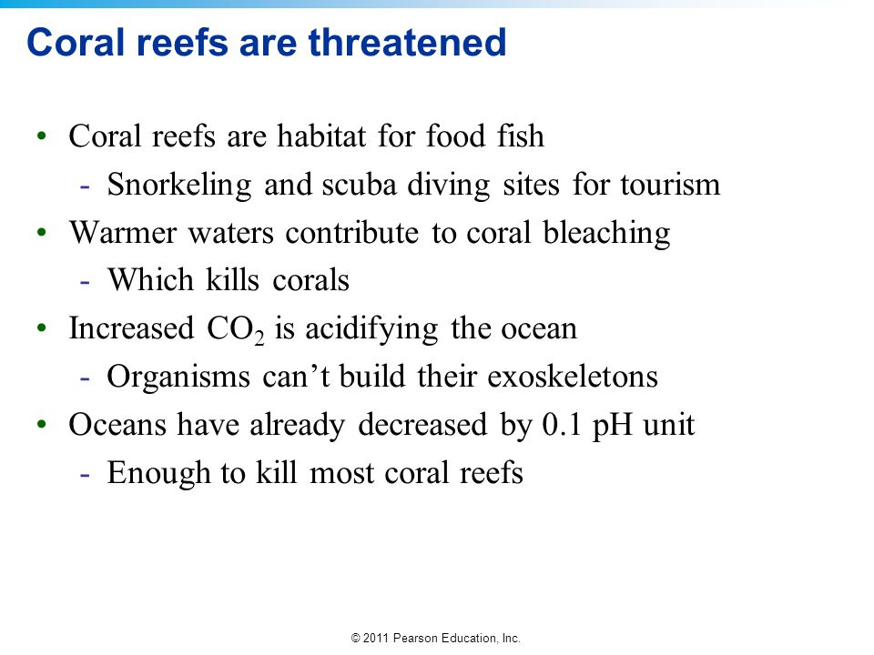 Coral reefs are threatened
