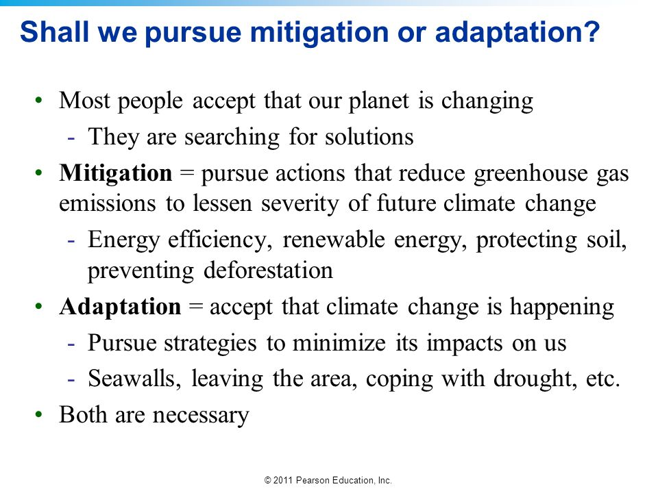 Shall we pursue mitigation or adaptation