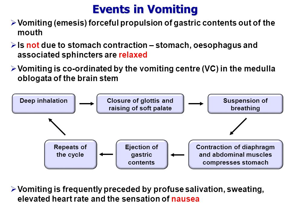 Events in Vomiting Vomiting (emesis) forceful propulsion of gastric contents out of the mouth.