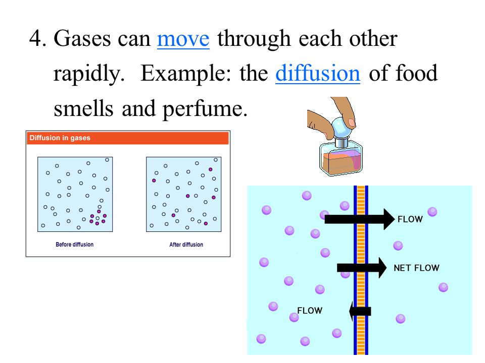 4. Gases can move through each other