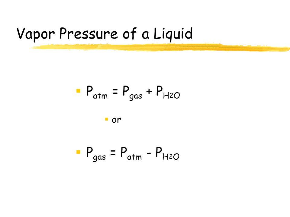 Vapor Pressure of a Liquid