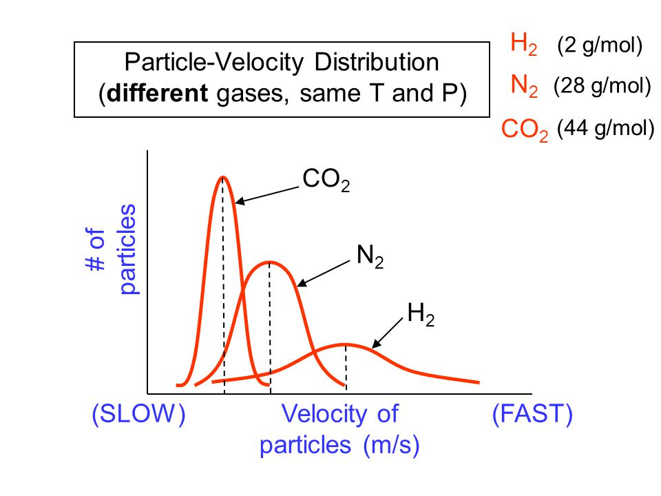 Particle-Velocity Distribution (different gases, same T and P) N2