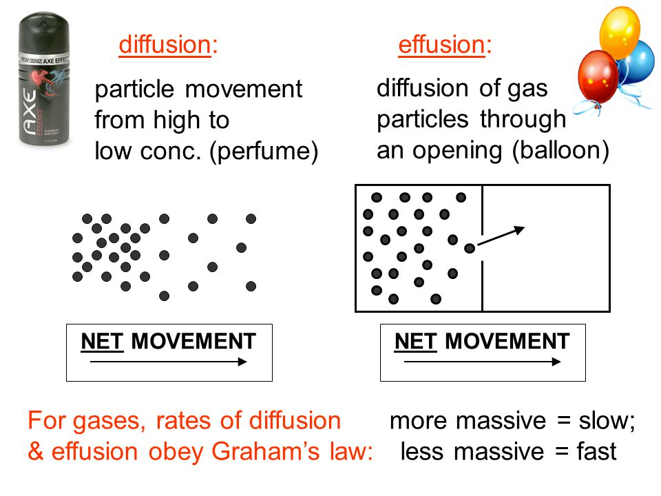 For gases, rates of diffusion & effusion obey Graham's law: