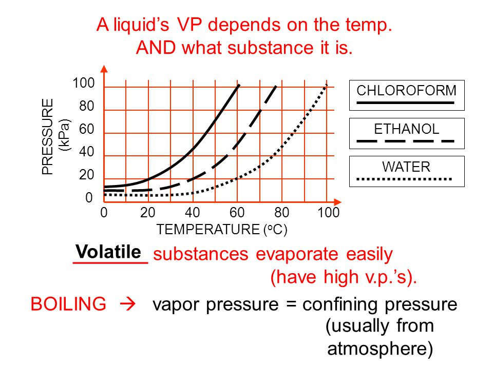 A liquid's VP depends on the temp. AND what substance it is.