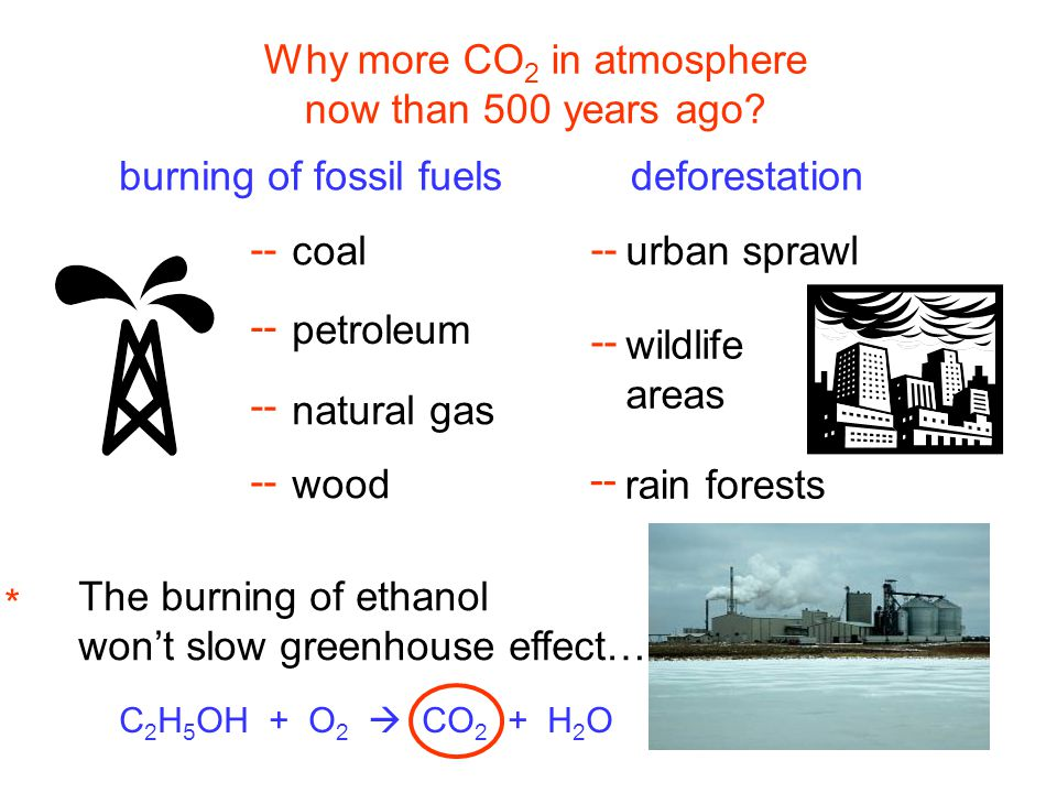 Why more CO2 in atmosphere