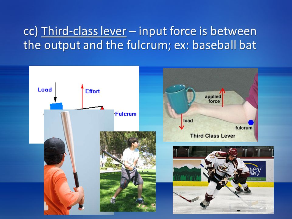 cc) Third-class lever – input force is between the output and the fulcrum; ex: baseball bat