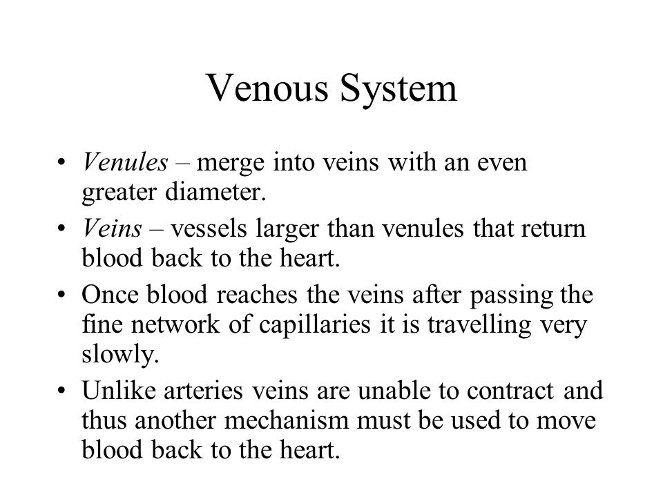 Venous System Venules – merge into veins with an even greater diameter. Veins – vessels larger than venules that return blood back to the heart.