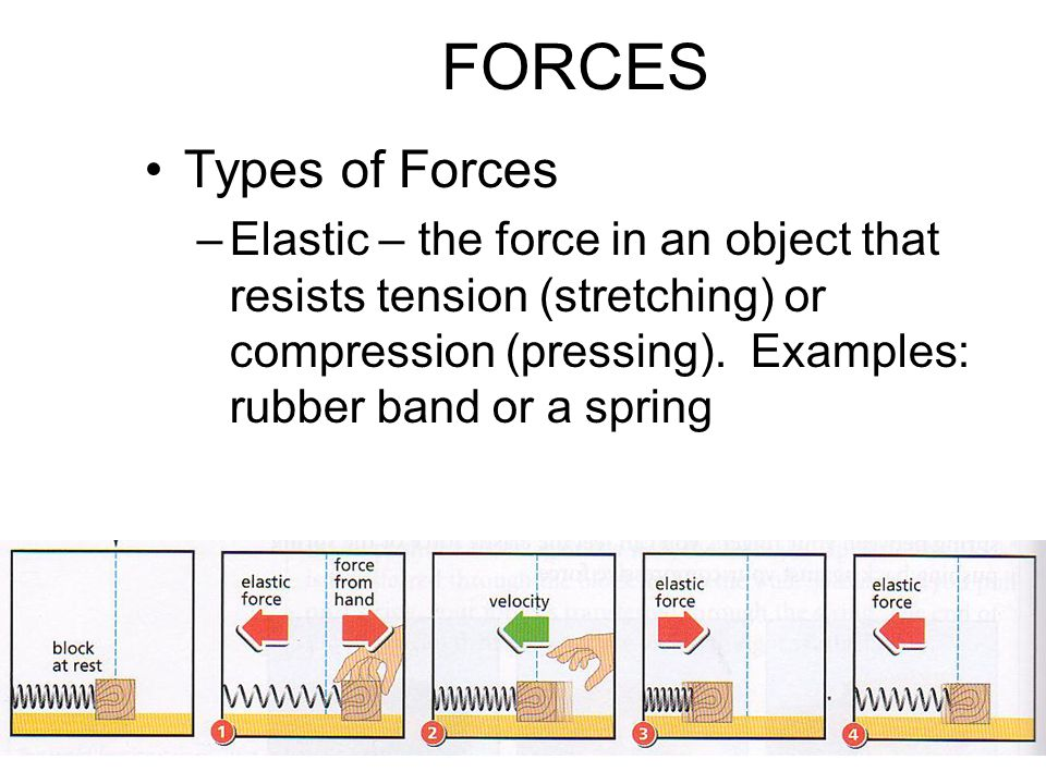FORCES Types of Forces.