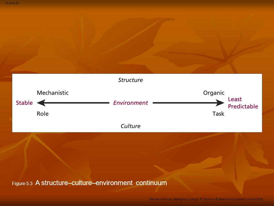 Figure 5.3 A structure–culture–environment continuum