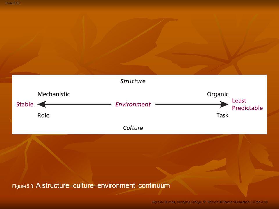 Figure 5.3 A structure–culture–environment continuum