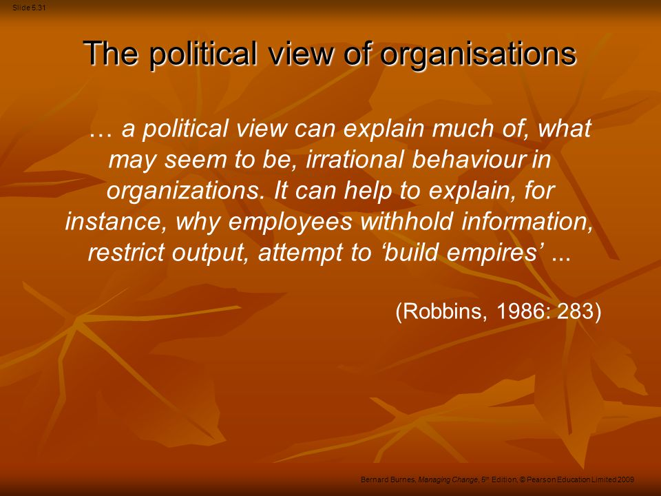 The political view of organisations
