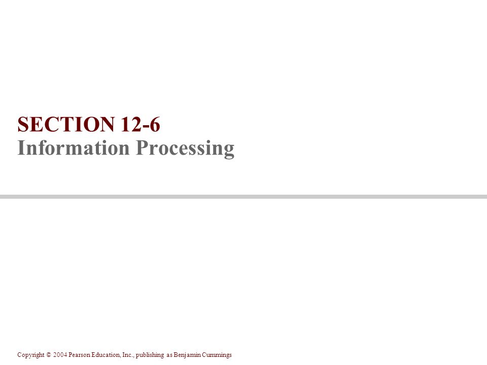 SECTION 12-6 Information Processing