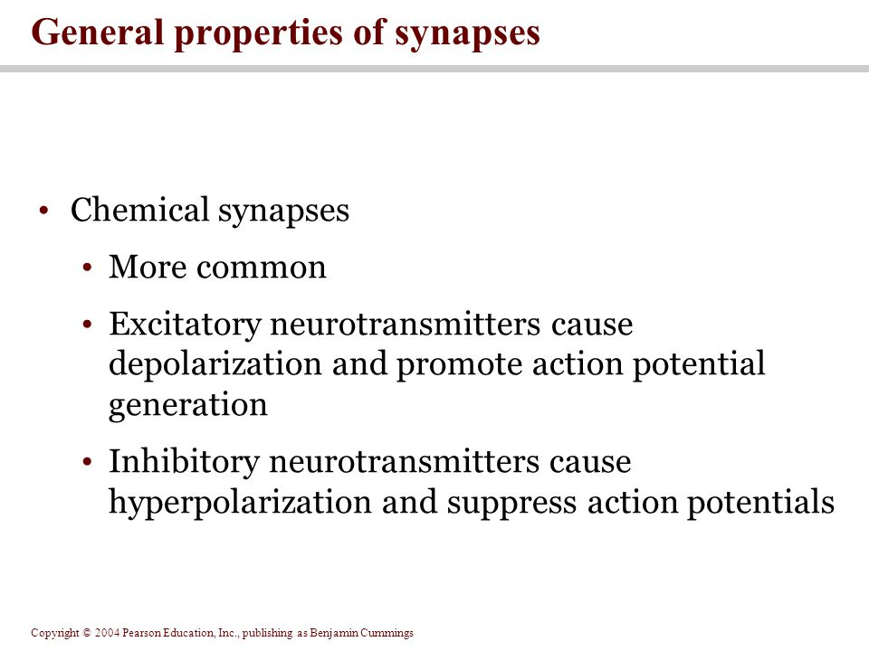 General properties of synapses