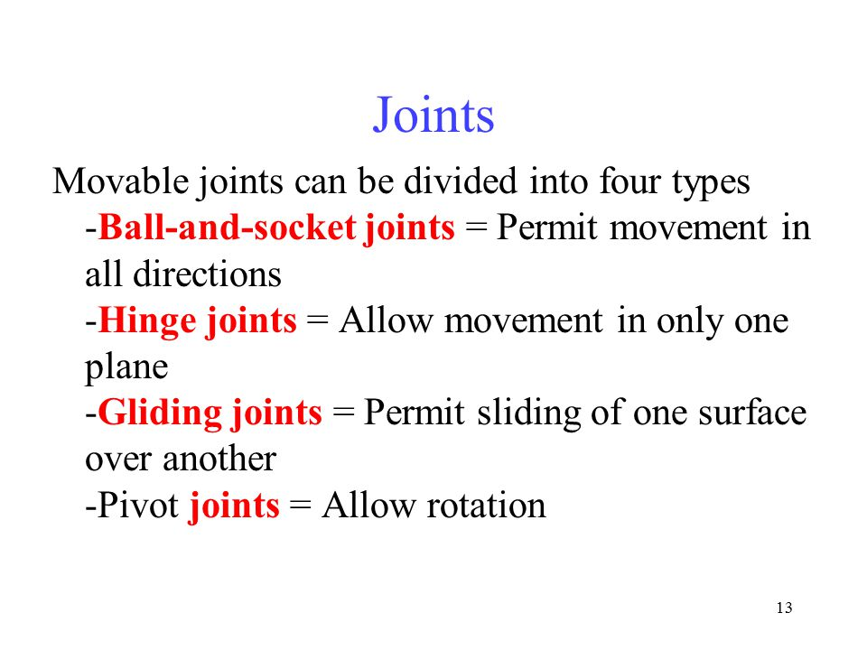Joints Movable joints can be divided into four types