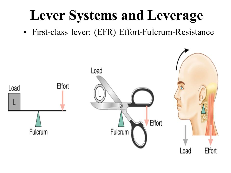 Lever Systems and Leverage
