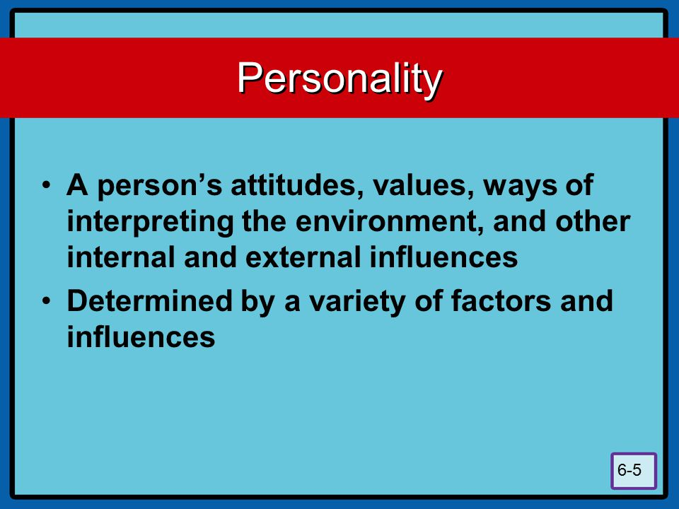 Personality A person's attitudes, values, ways of interpreting the environment, and other internal and external influences.